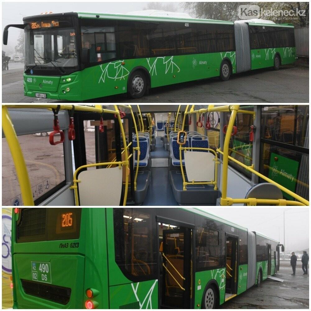 Езжай, гармонь: в Алматы на линию BRT вышли новые автобусы-гармошки, фото-1