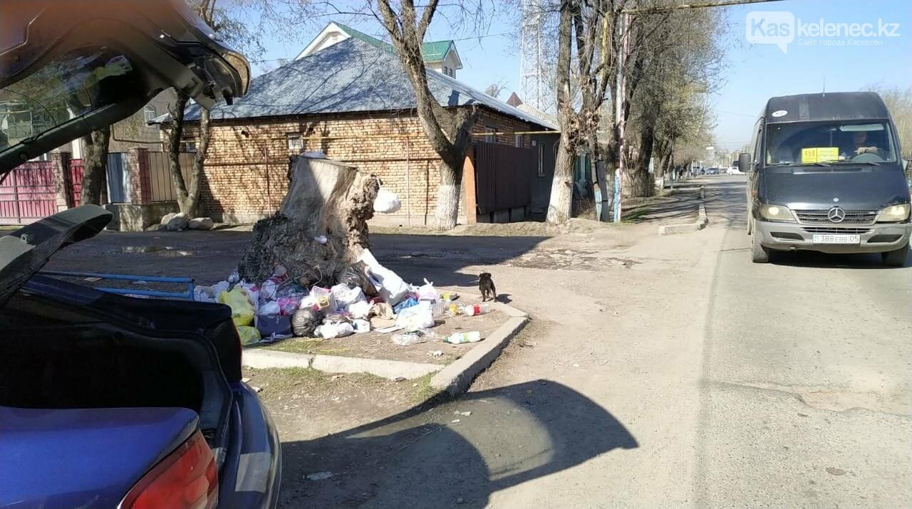 А мусор и ныне там: аким Каскелена возьмет под личный контроль вывоз ТБО, фото-6