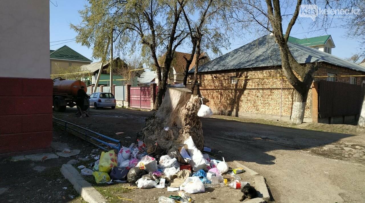 А мусор и ныне там: аким Каскелена возьмет под личный контроль вывоз ТБО, фото-1