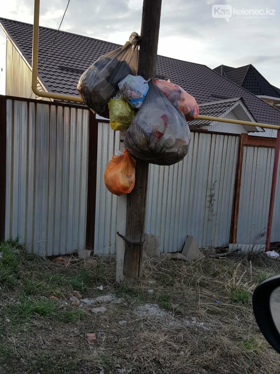 А мусор и ныне там: аким Каскелена возьмет под личный контроль вывоз ТБО, фото-7