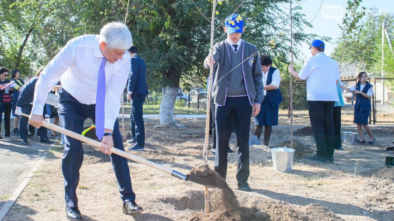 30 тысяч деревьев высадили в Алматинской области, фото-1
