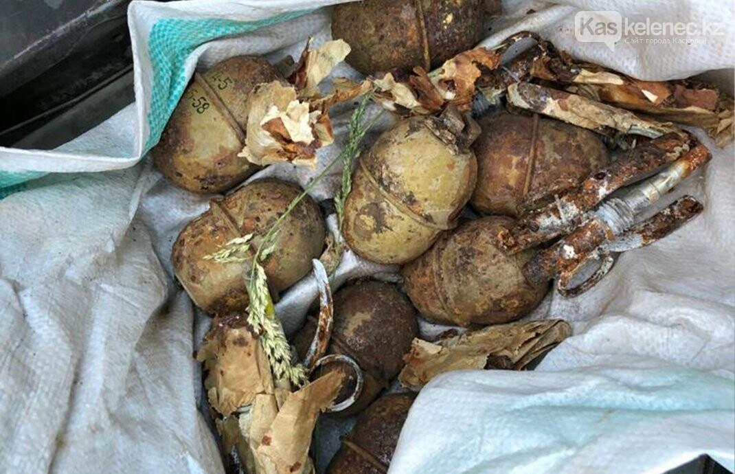 Боевые гранаты продавали в Алматинской области, фото-1
