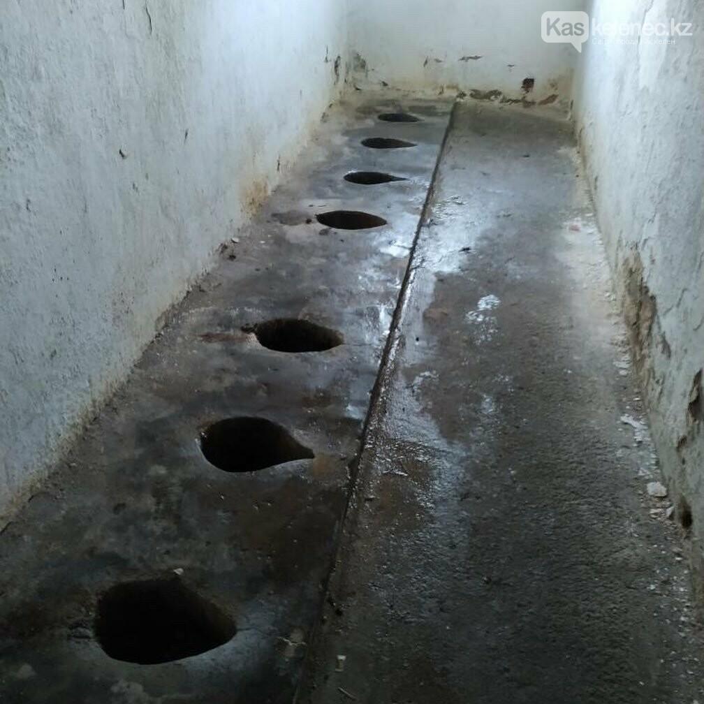 356 школ в Алматинской области имеют наружные туалеты, фото-1