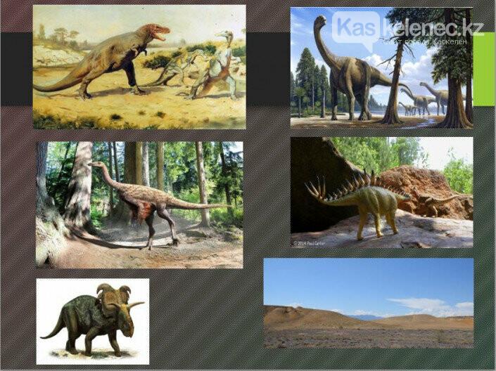 Геопарк с динозаврами появится в нацпарке Алматинской области, фото-2